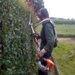Tuin onderhoud apeldoorn